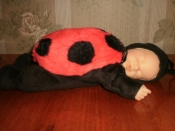 кукла Anne Geddes