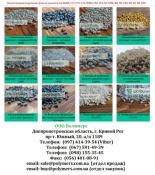 Вторинна гранула: Трубний поліетилен, ПС (УМП), ПП-А4, ПЕНД видув, лиття,ПЕ100
