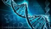 Приглашаем принять участие в создании Научно - Религиозной организации
